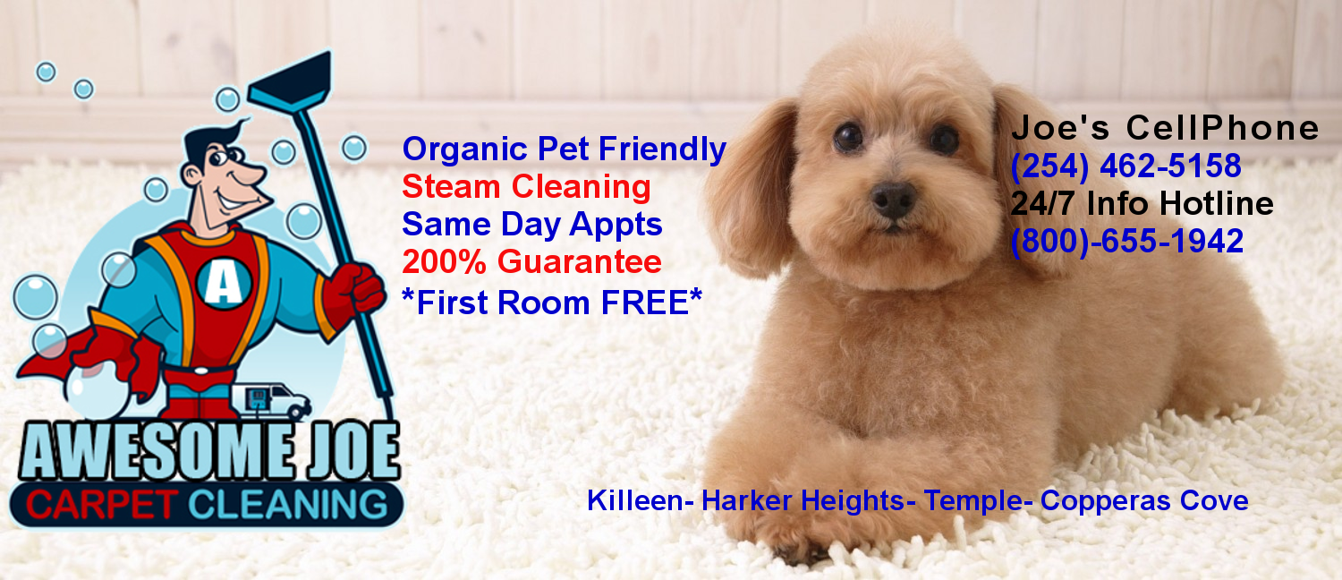 Friendly Carpet Cleaning Killeen Today S Deals